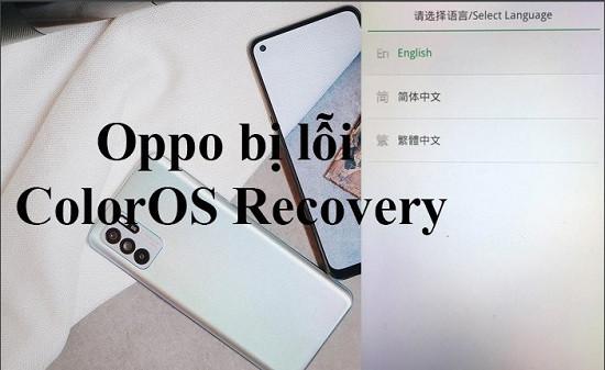 Điện thoại Oppo bị lỗi ColorOS Recovery