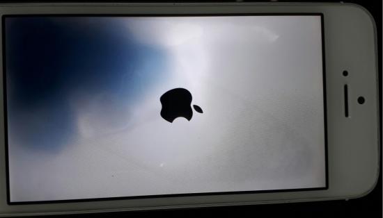 Màn hình iPhone 7 Plus bị chảy mực