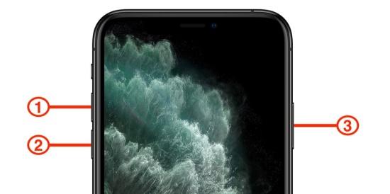 iPhone 11 bị treo táo