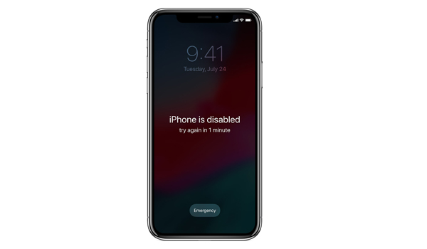 iPhone-XS-Max-bi-vo-hieu-hoa