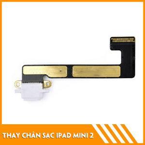 thay-chan-sac-iPad-Mini-2-0